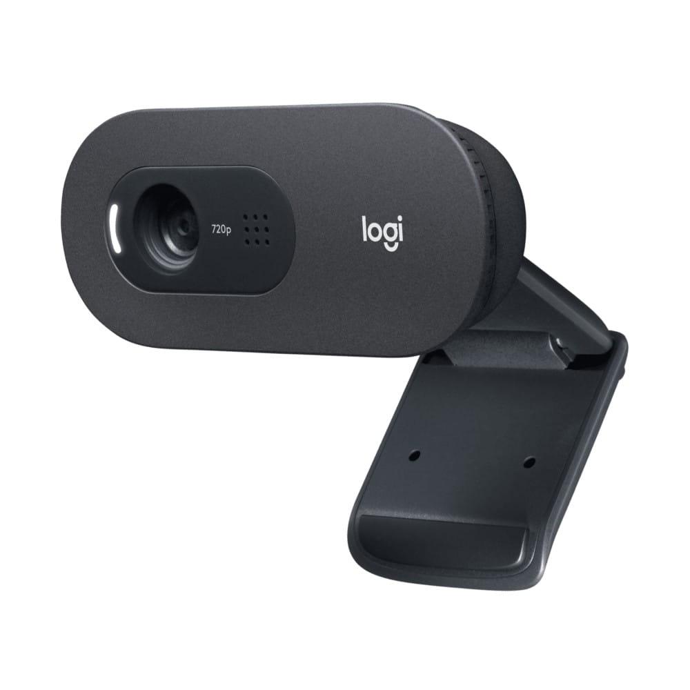 Logitech C505E HD